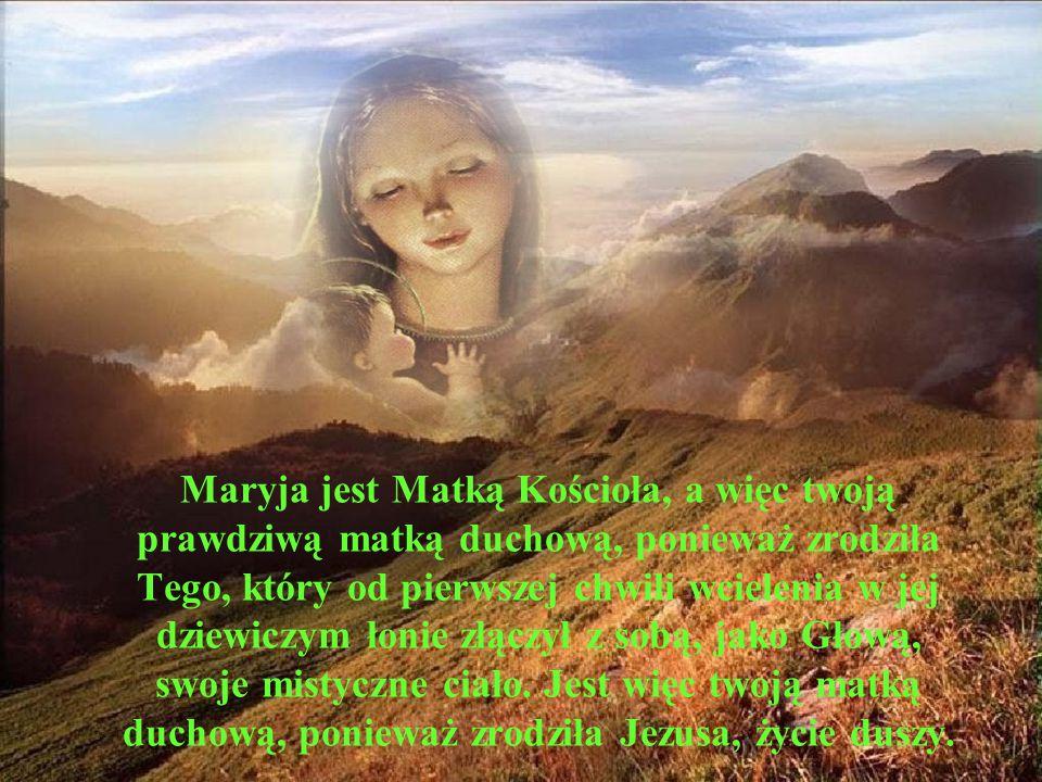 Maryja jest Matką Kościoła, a więc twoją prawdziwą matką duchową, ponieważ zrodziła Tego, który od pierwszej chwili wcielenia w jej dziewiczym łonie złączył z sobą, jako Głową, swoje mistyczne ciało.