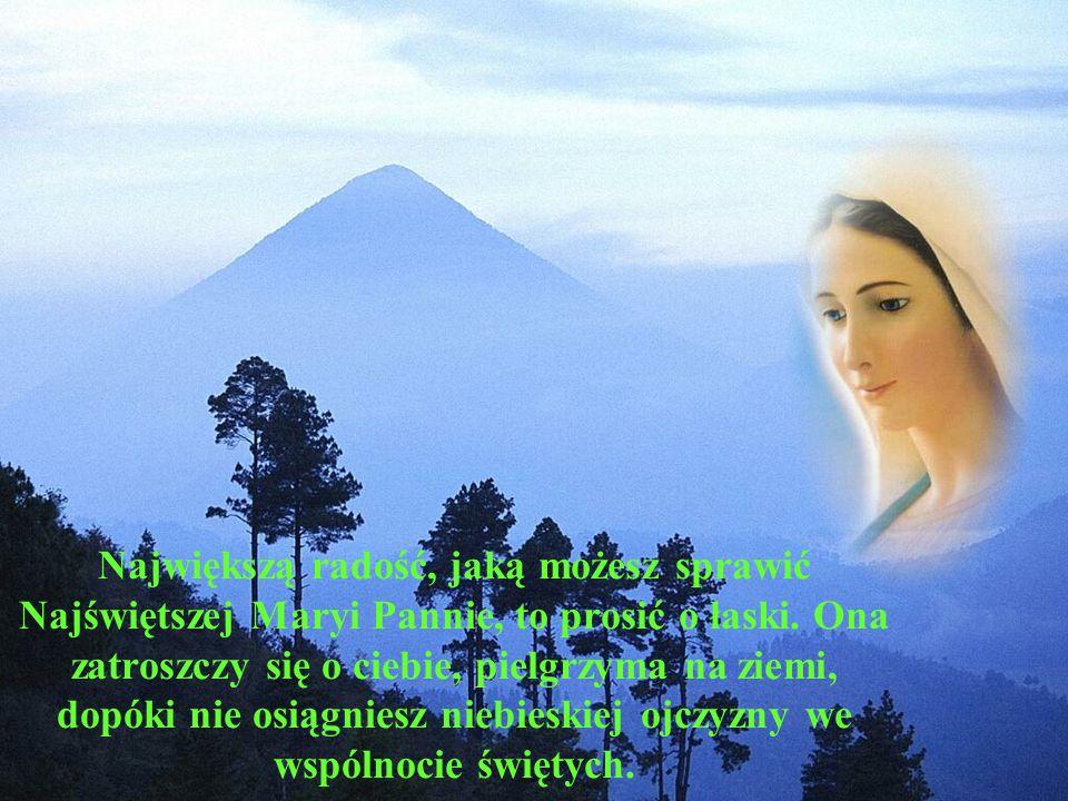 Największą radość, jaką możesz sprawić Najświętszej Maryi Pannie, to prosić o łaski.