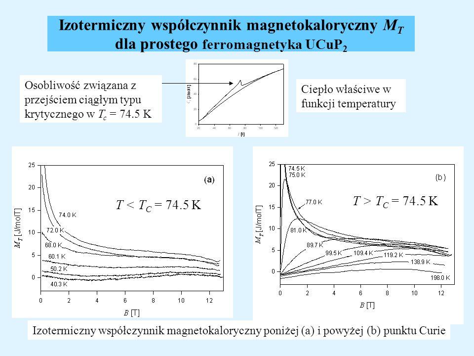 Izotermiczny współczynnik magnetokaloryczny MT dla prostego ferromagnetyka UCuP2