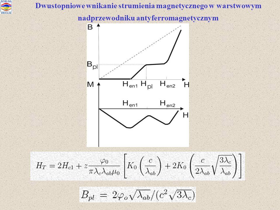 Dwustopniowe wnikanie strumienia magnetycznego w warstwowym nadprzewodniku antyferromagnetycznym