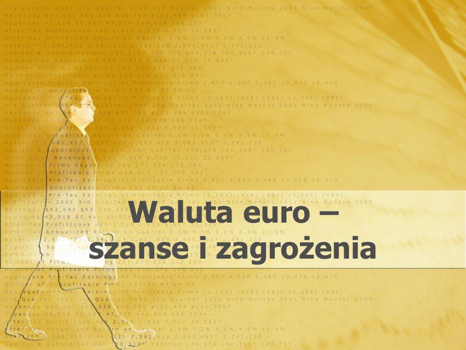 Waluta euro – szanse i zagrożenia