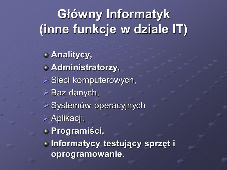 Główny Informatyk (inne funkcje w dziale IT)