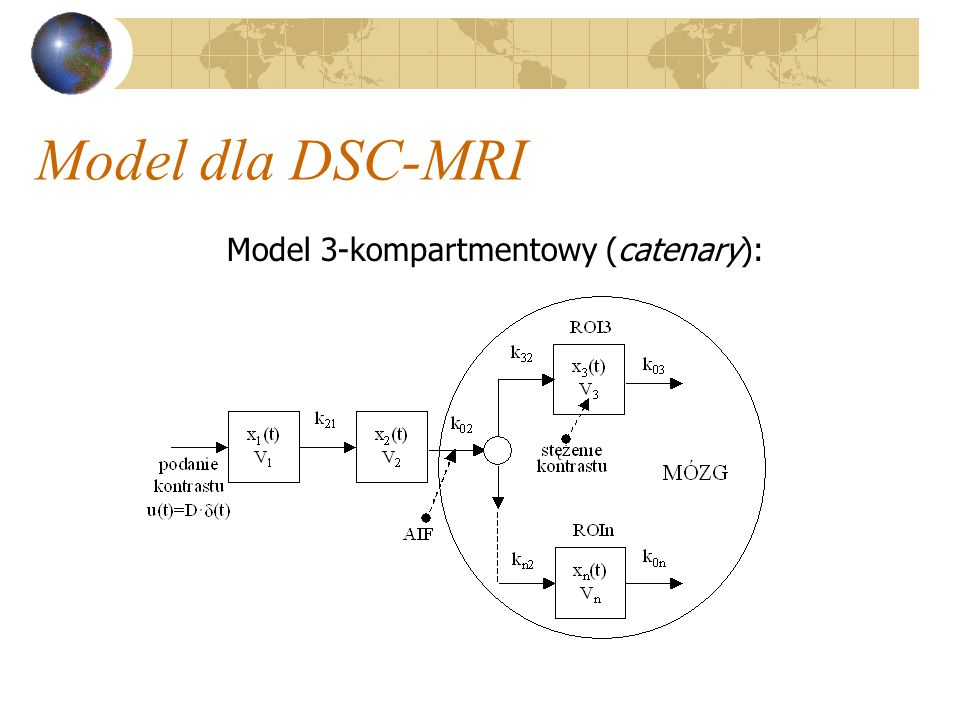 Model 3-kompartmentowy (catenary):