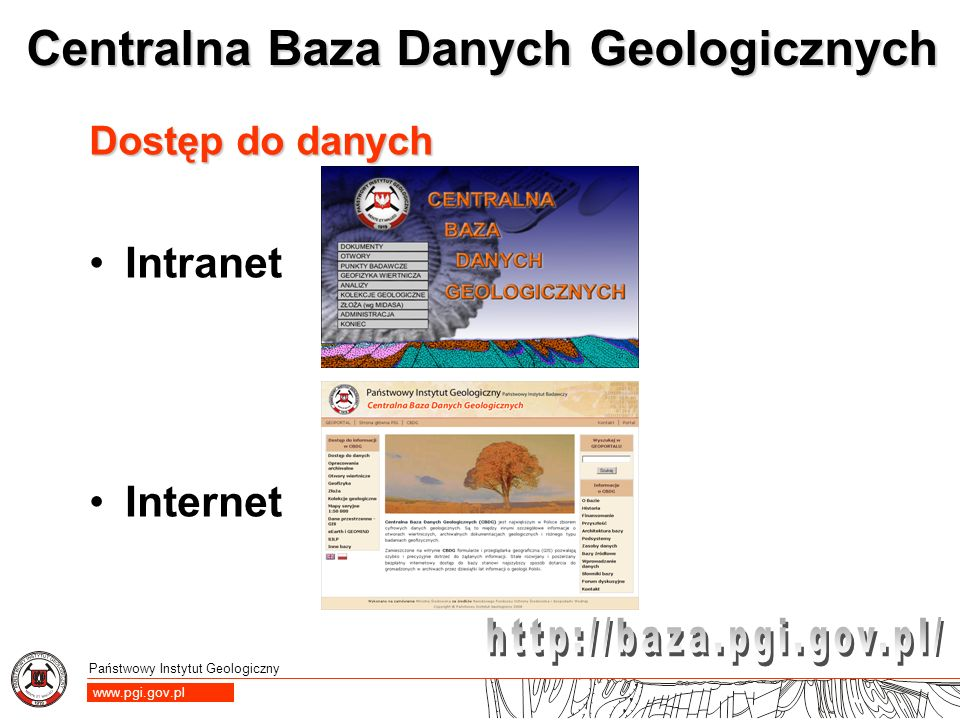 Dostęp do danych Intranet Internet
