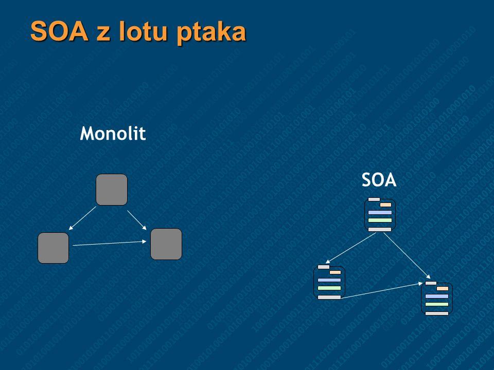 SOA z lotu ptaka Monolit SOA