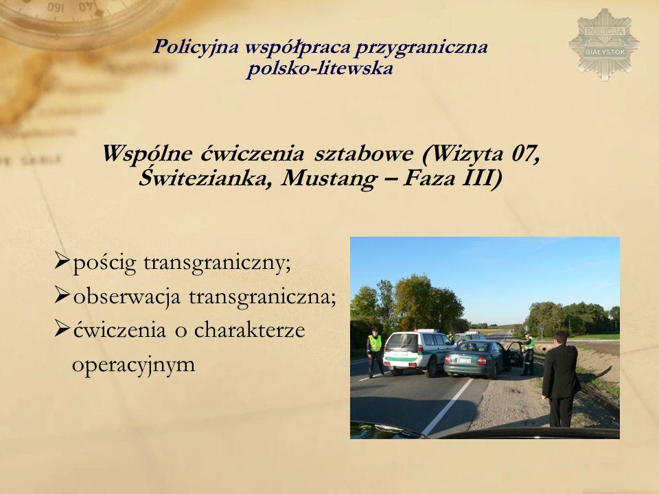 pościg transgraniczny; obserwacja transgraniczna;