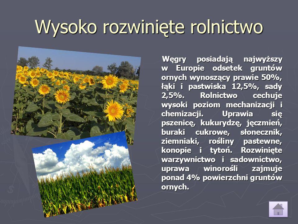 Wysoko rozwinięte rolnictwo
