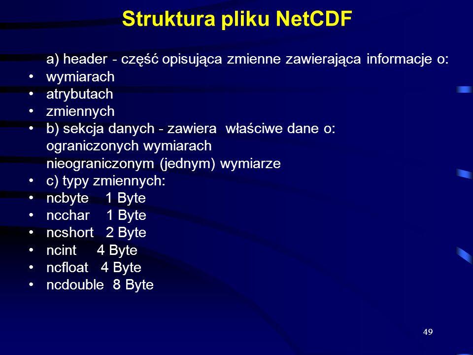 Struktura pliku NetCDF