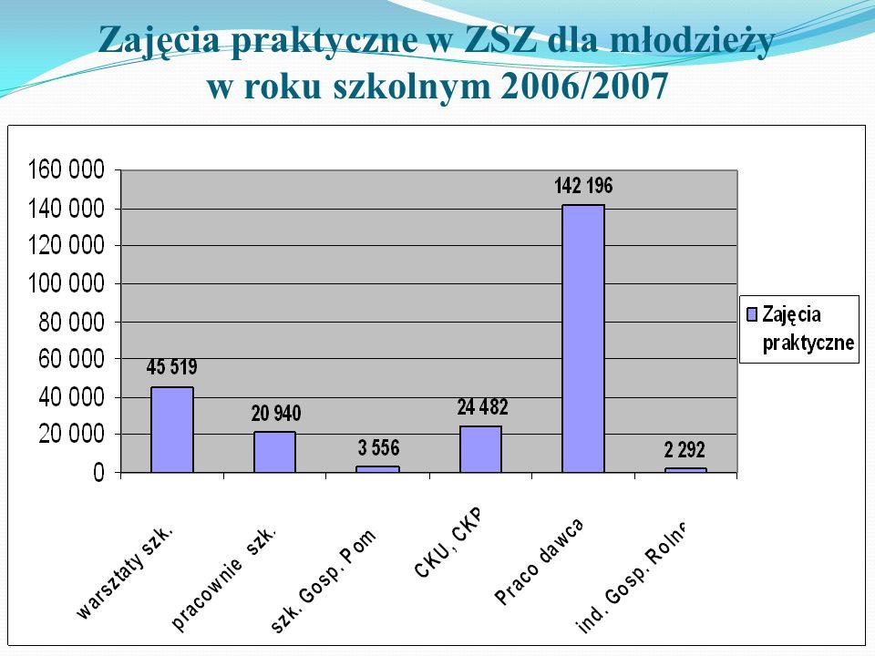 Zajęcia praktyczne w ZSZ dla młodzieży w roku szkolnym 2006/2007