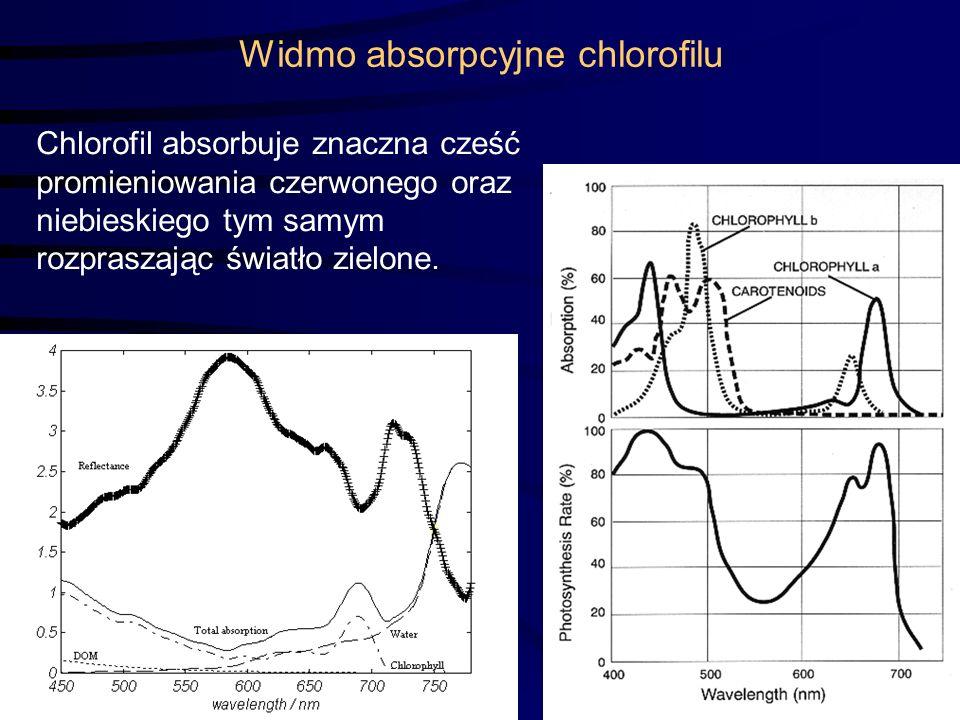Widmo absorpcyjne chlorofilu