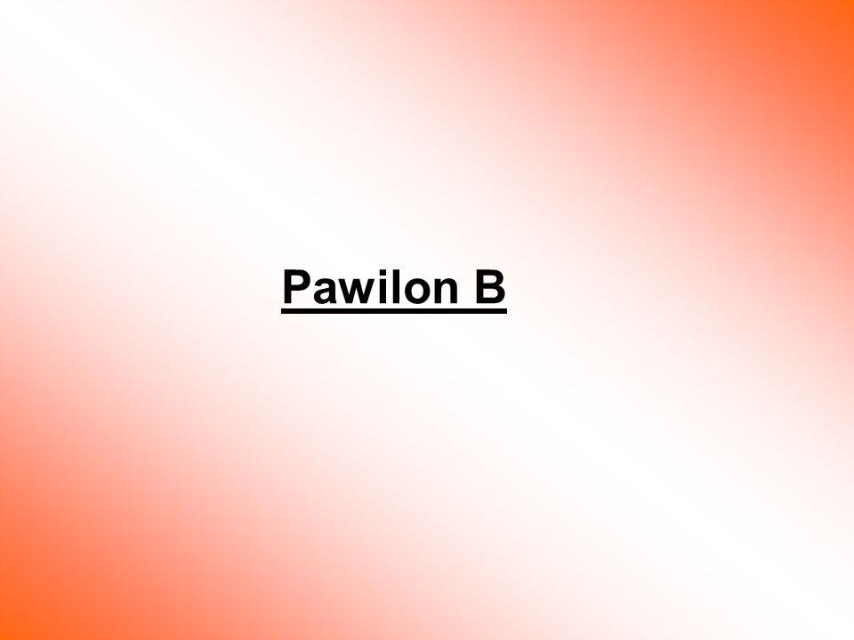 Pawilon B