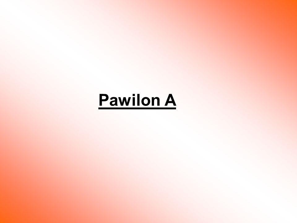 Pawilon A