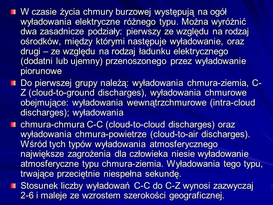 W czasie życia chmury burzowej występują na ogół wyładowania elektryczne różnego typu. Można wyróżnić dwa zasadnicze podziały: pierwszy ze względu na rodzaj ośrodków, między którymi następuje wyładowanie, oraz drugi – ze względu na rodzaj ładunku elektrycznego (dodatni lub ujemny) przenoszonego przez wyładowanie piorunowe