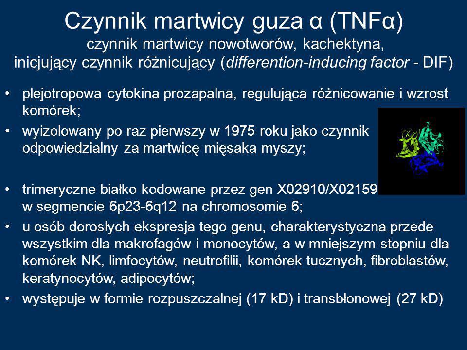 Czynnik martwicy guza α (TNFα) czynnik martwicy nowotworów, kachektyna, inicjujący czynnik różnicujący (differention-inducing factor - DIF)