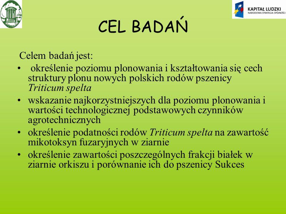 CEL BADAŃ Celem badań jest: określenie poziomu plonowania i kształtowania się cech struktury plonu nowych polskich rodów pszenicy Triticum spelta.