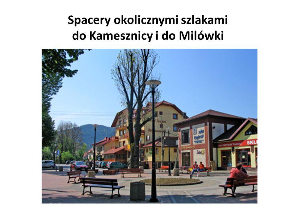Spacery okolicznymi szlakami do Kamesznicy i do Milówki