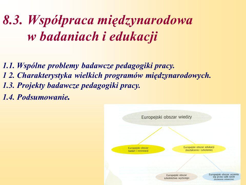 8.3. Współpraca międzynarodowa w badaniach i edukacji