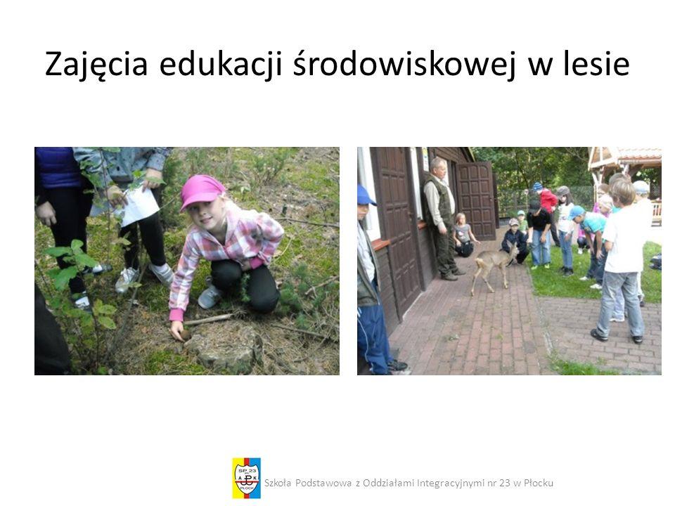 Zajęcia edukacji środowiskowej w lesie