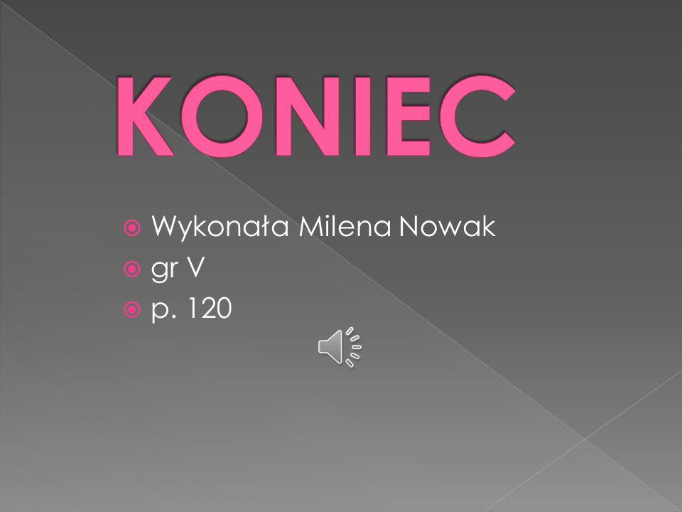 KONIEC Wykonała Milena Nowak gr V p. 120