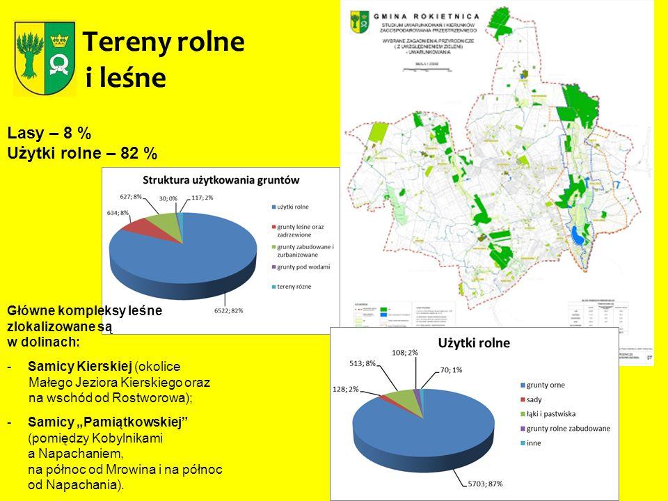 Tereny rolne i leśne Lasy – 8 % Użytki rolne – 82 %