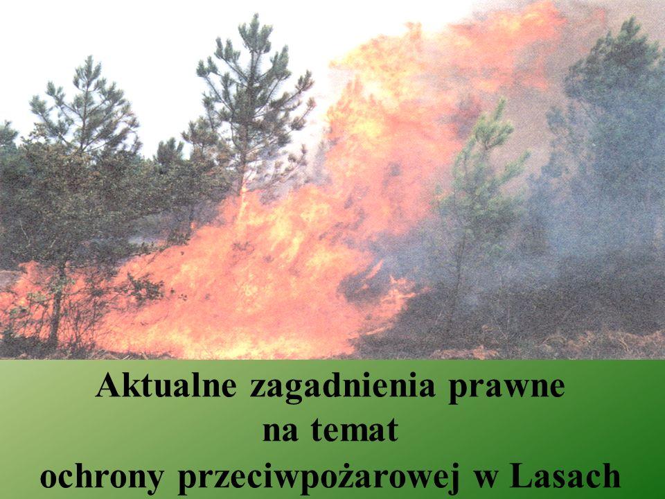 Aktualne zagadnienia prawne na temat ochrony przeciwpożarowej w Lasach