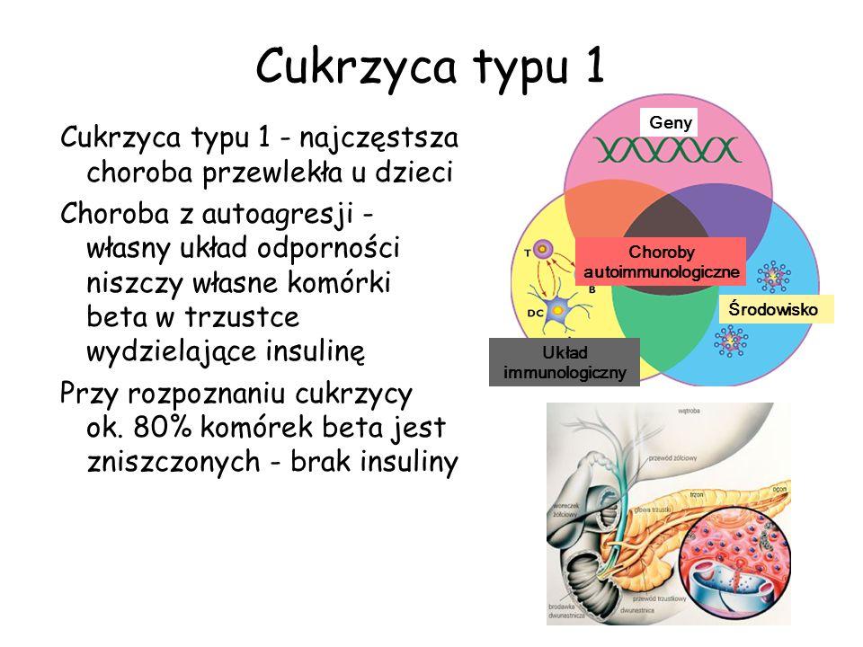 Cukrzyca typu 1Geny. Cukrzyca typu 1 - najczęstsza choroba przewlekła u dzieci.