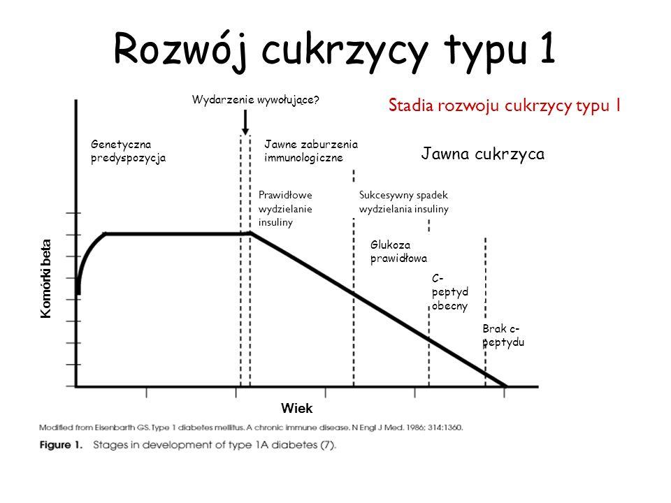 Stadia rozwoju cukrzycy typu 1