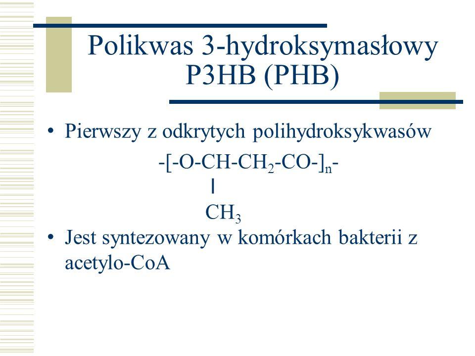 Polikwas 3-hydroksymasłowy P3HB (PHB)