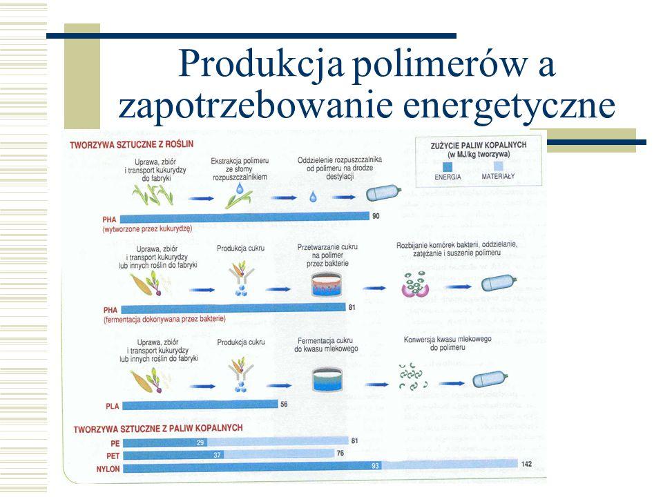 Produkcja polimerów a zapotrzebowanie energetyczne