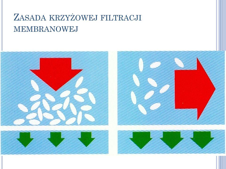 Zasada krzyżowej filtracji membranowej