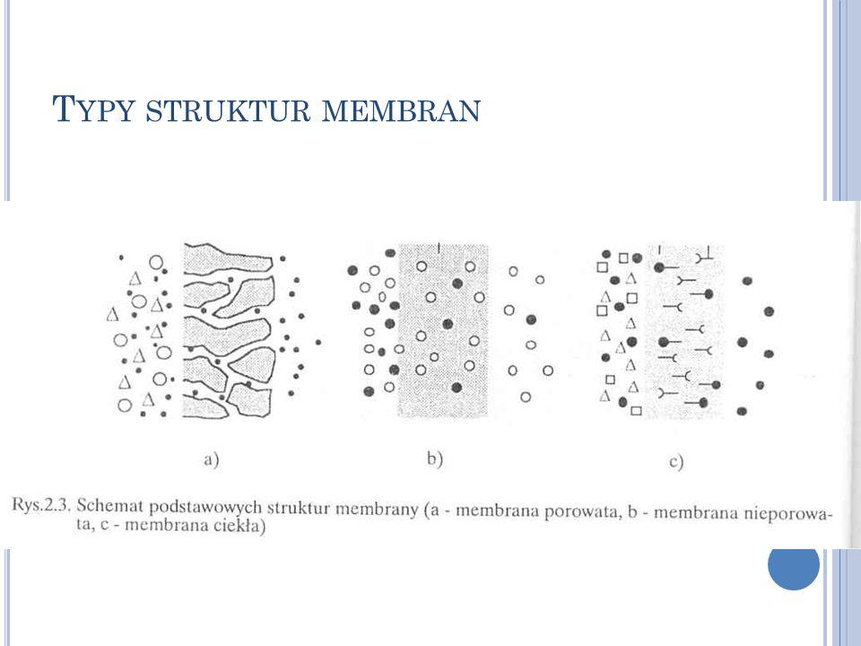 Typy struktur membran