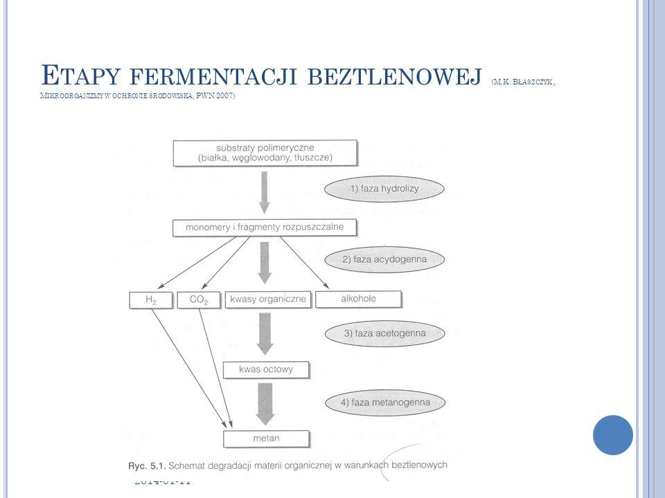 Etapy fermentacji beztlenowej (M. K