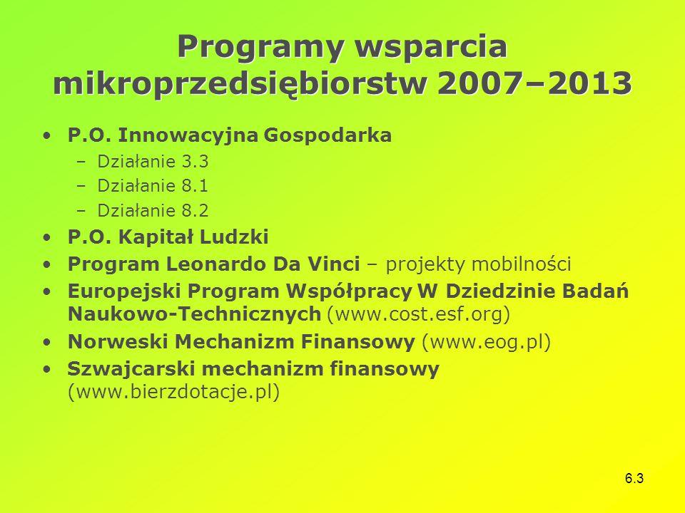 Programy wsparcia mikroprzedsiębiorstw 2007–2013