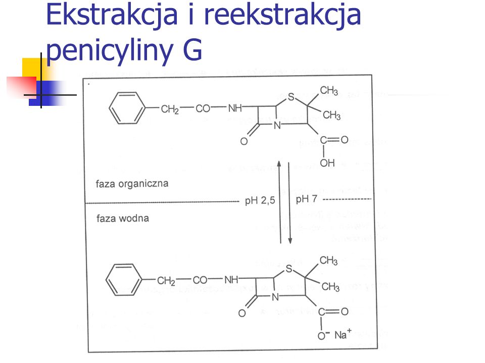 Ekstrakcja i reekstrakcja penicyliny G