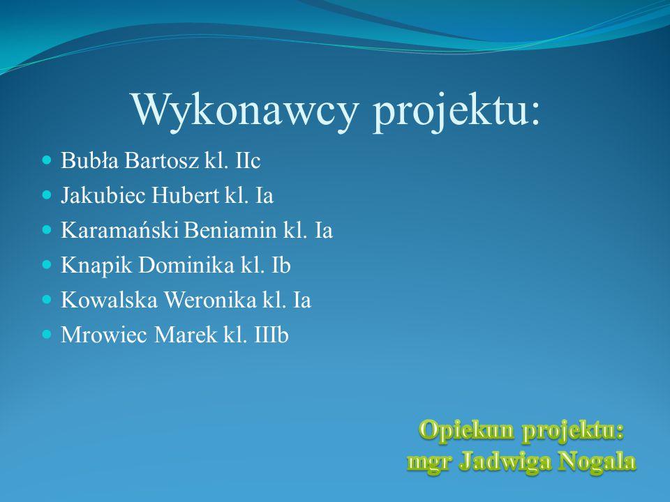 Wykonawcy projektu: Opiekun projektu: mgr Jadwiga Nogala