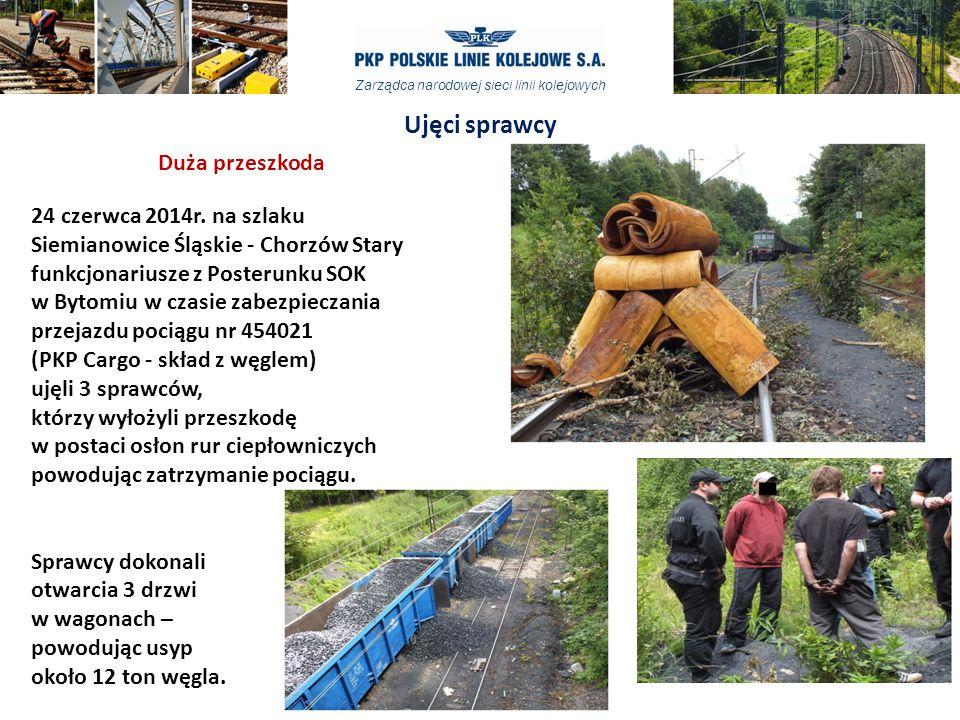 Ujęci sprawcy Duża przeszkoda 24 czerwca 2014r. na szlaku
