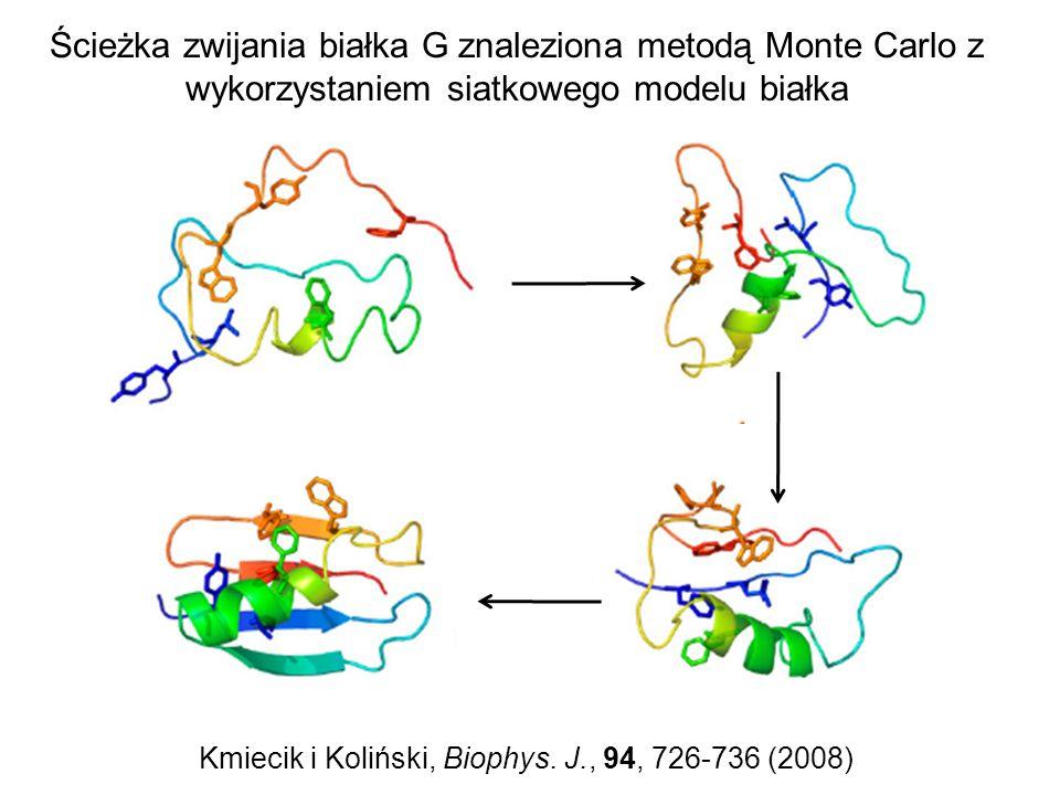 Kmiecik i Koliński, Biophys. J., 94, 726-736 (2008)