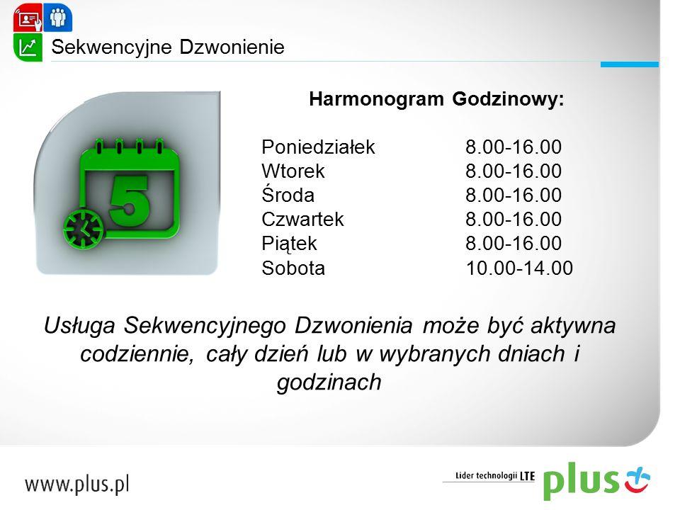 Harmonogram Godzinowy: