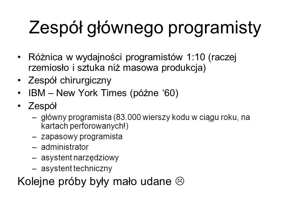 Zespół głównego programisty