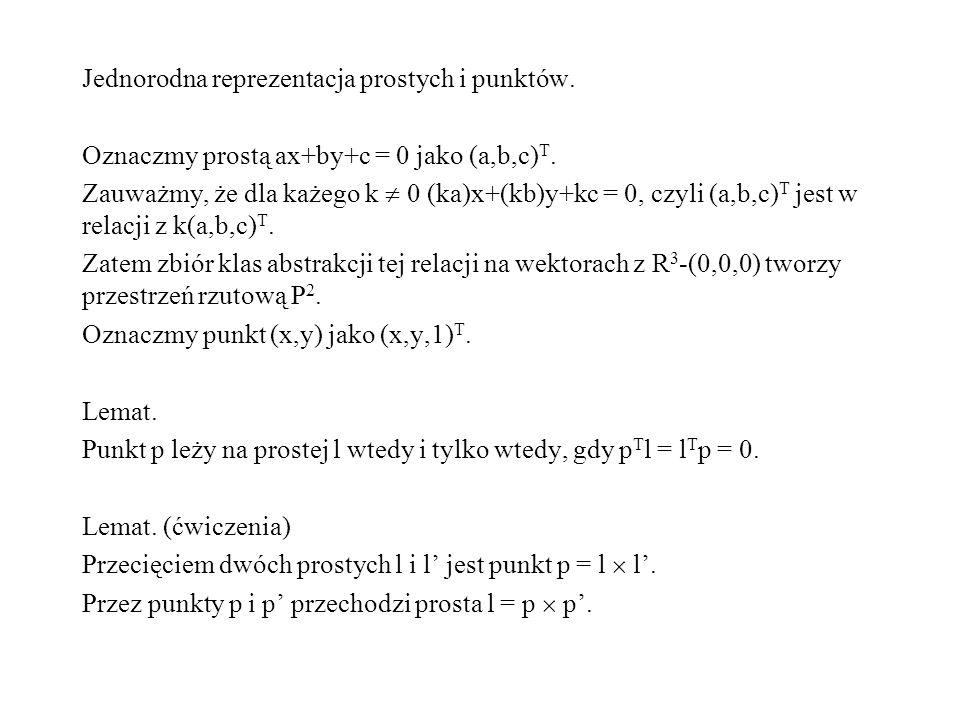 Jednorodna reprezentacja prostych i punktów.