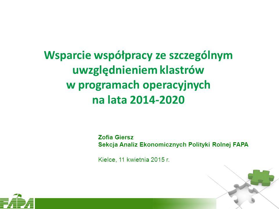 Wsparcie współpracy ze szczególnym uwzględnieniem klastrów w programach operacyjnych na lata 2014-2020