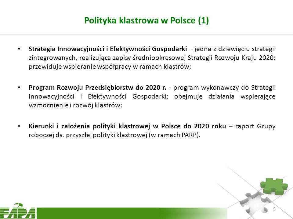 Polityka klastrowa w Polsce (1)