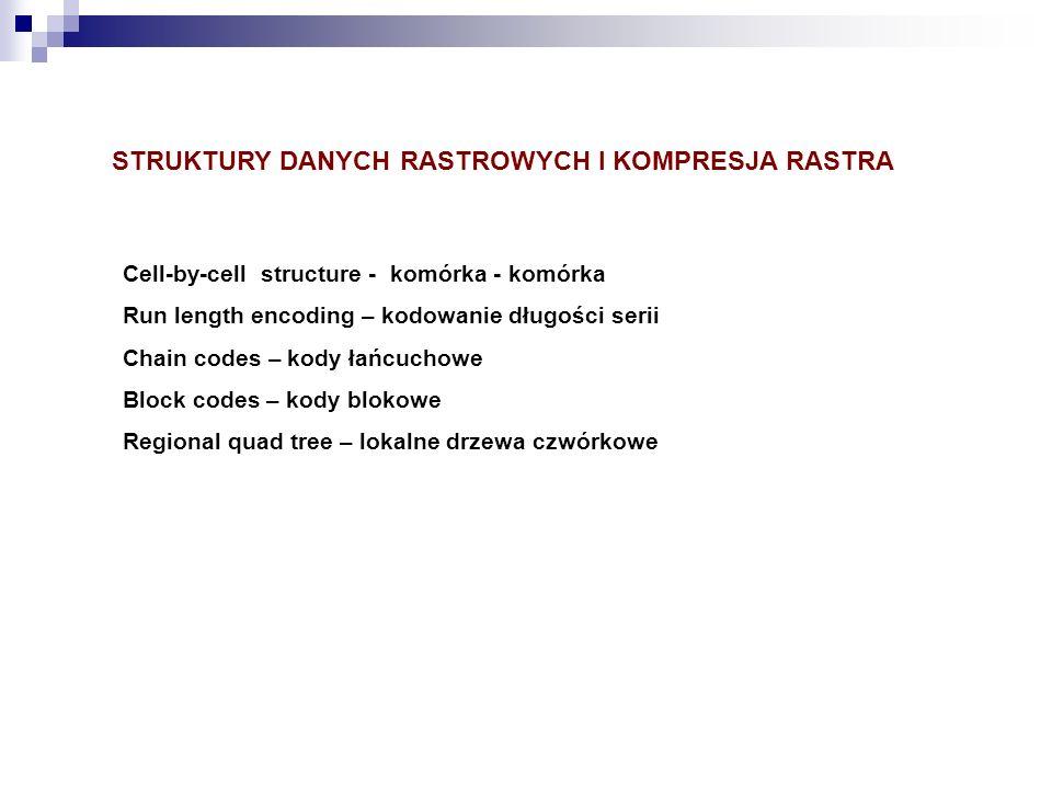 STRUKTURY DANYCH RASTROWYCH I KOMPRESJA RASTRA