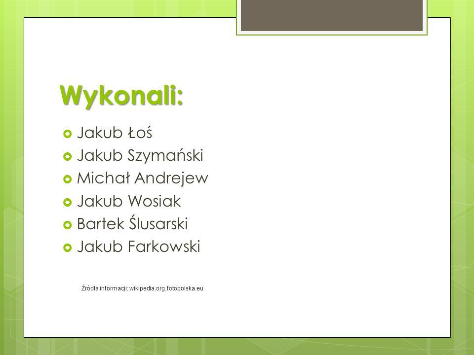 Wykonali: Jakub Łoś Jakub Szymański Michał Andrejew Jakub Wosiak