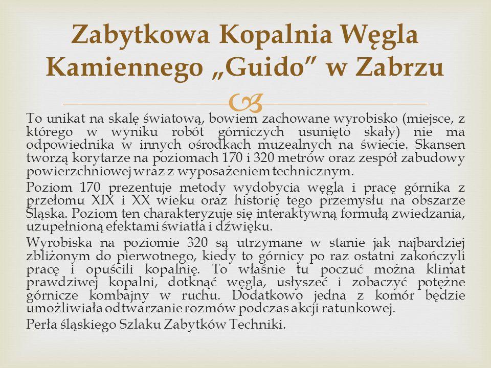 """Zabytkowa Kopalnia Węgla Kamiennego """"Guido w Zabrzu"""