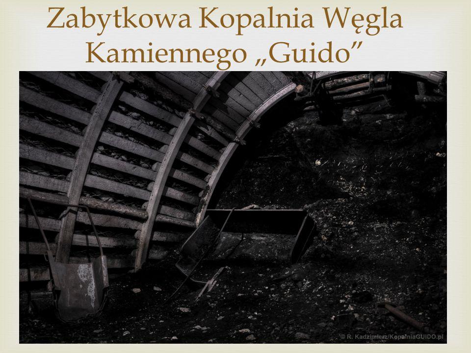 """Zabytkowa Kopalnia Węgla Kamiennego """"Guido"""