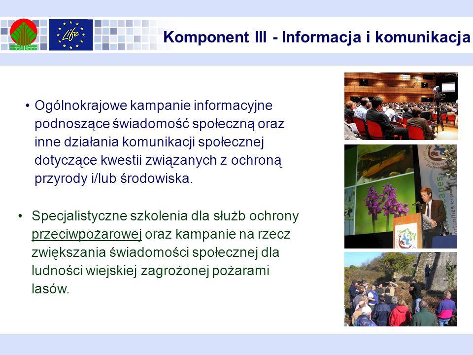 Komponent III - Informacja i komunikacja