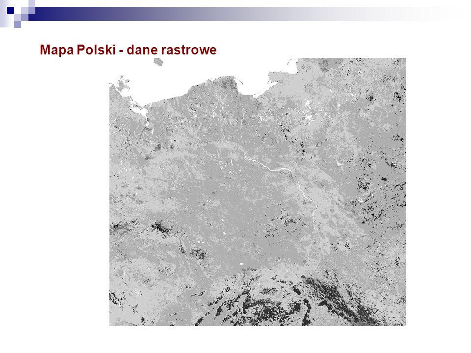 Mapa Polski - dane rastrowe