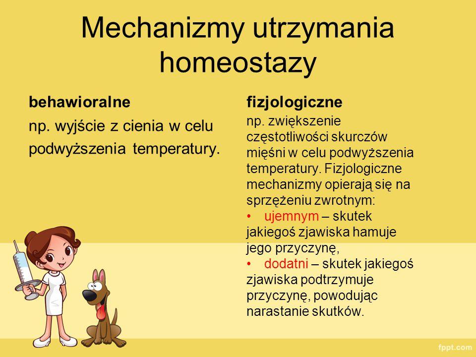 Mechanizmy utrzymania homeostazy