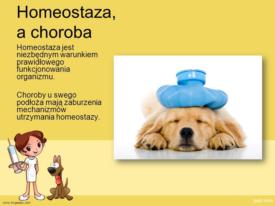 Homeostaza, a choroba Homeostaza jest niezbędnym warunkiem prawidłowego funkcjonowania organizmu.